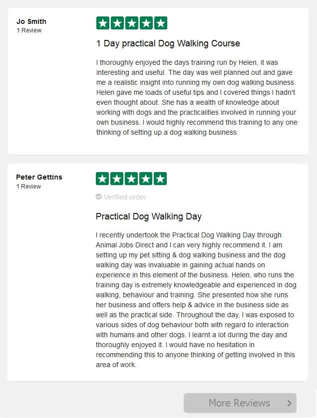 Dog Walking Course Reviews