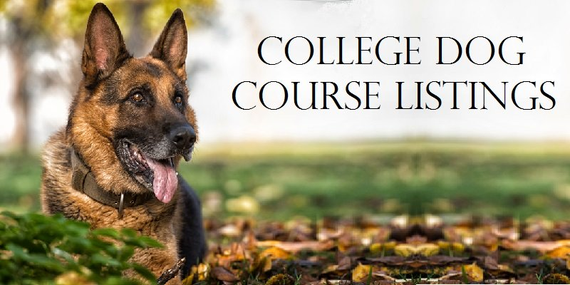 Dog and Canine Course Listings